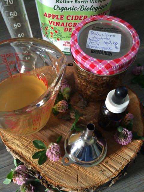 herbs, herbal vinegars, infused vinegars, acetates, plant medicine, kitchen herbalist, yeg herbalist,